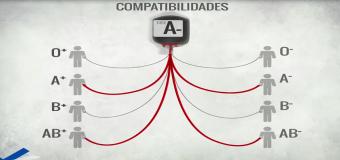 Compatibilità dei gruppi sanguigni